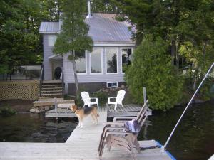Cottage Link Ontario Cottage Rental On50445